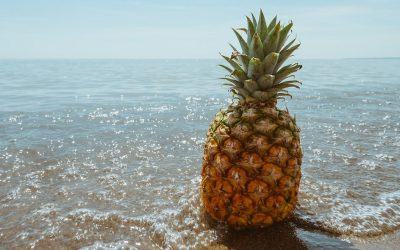 A Brief History of Pineapples in Hawaii