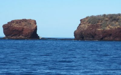 10 Reasons to Take a Spectacular Snorkel Cruise to Lanai